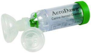 Признаки астмы у собаки