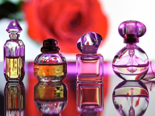 Несмотря на то, что парфюмерия обладает насыщенным ароматом, реакция собак на нее индивидуальна