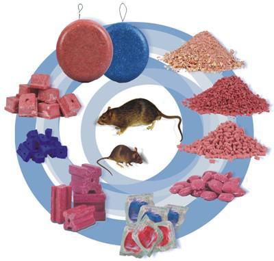 Крысиная отрава - яд опасный для собак