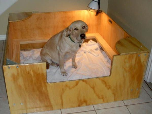 Место для родов собаки