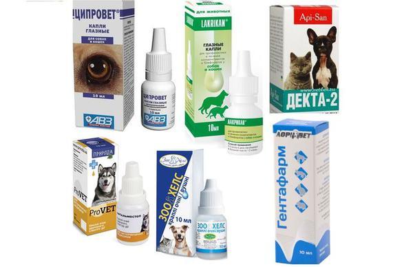 Офтальмологические препараты для собак